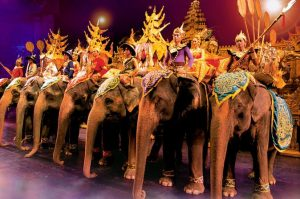 decorated performing elephants