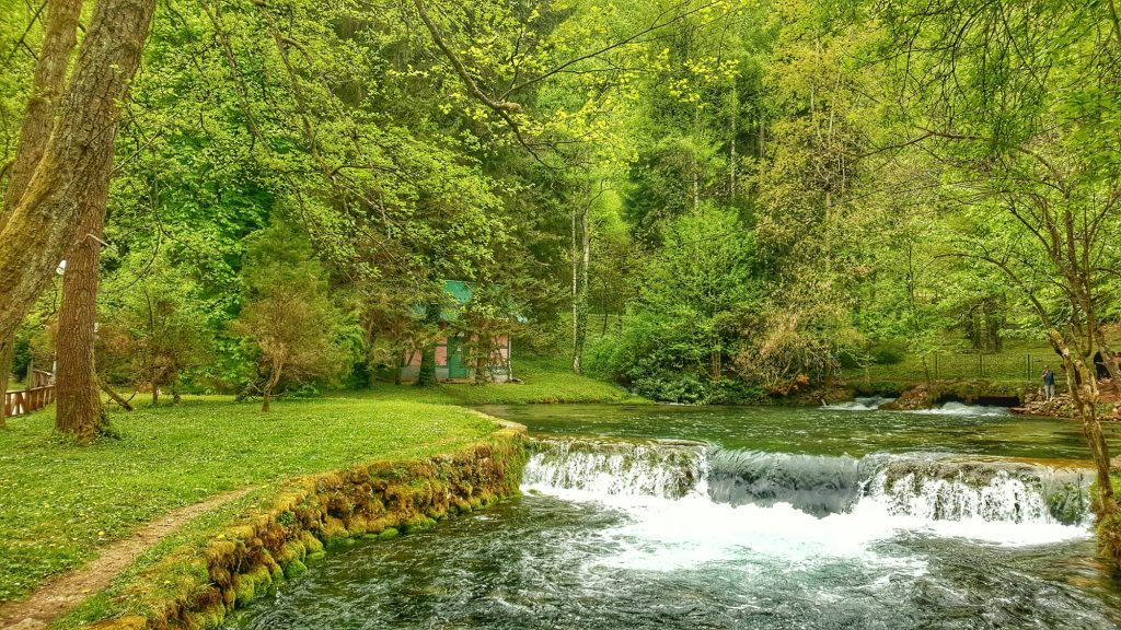 vrelo bosne, waterfall, streams and trees in Bosnia