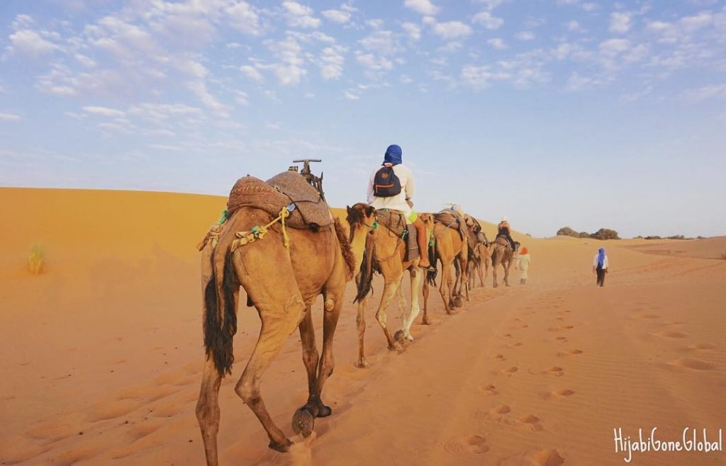 a camel caravan rides through the sahara desert