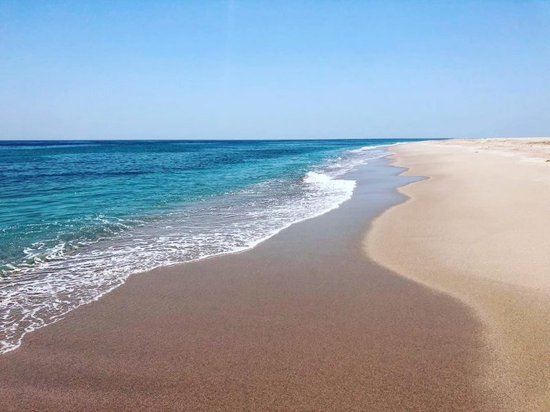 clear blue waters and white sand of ras al hadd beach halal travel guide
